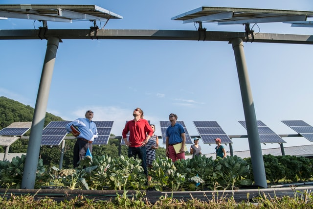 pole-mounted solar panels